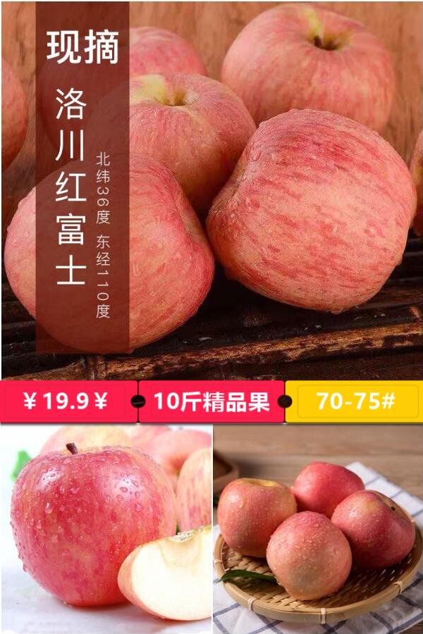 陕西特产洛川红富士苹果当季新鲜脆甜延安红富士苹果现采摘不打蜡